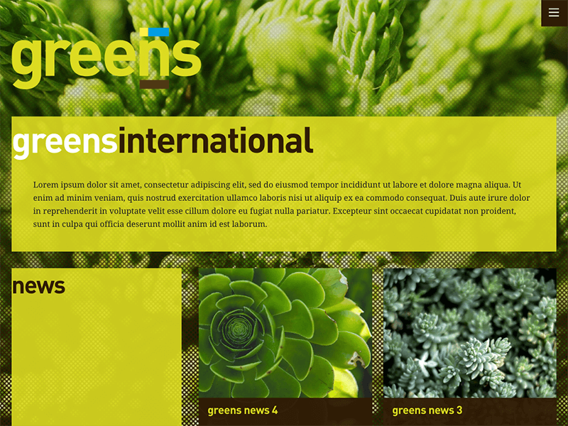 AMGdesign Wordpress Greens international